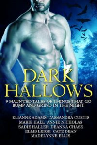 Book Cover: Dark Hallows