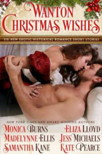 Book Cover: Wanton Christmas Wishes